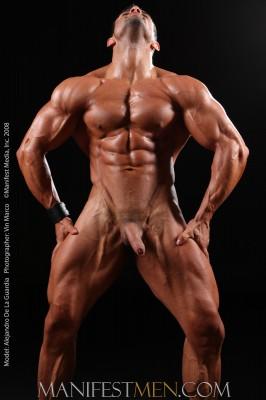 big_cock_muscle